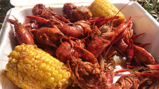 Mudbugs in March 2013
